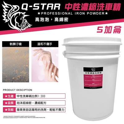 Q-STAR 中性濃縮泡沫洗車精5加侖 超值划算 不咬手高泡配方 (7折)