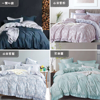 天絲床包 100%頂級天絲 萊賽爾雙人5x6.2尺 兩用被床包四件組0504