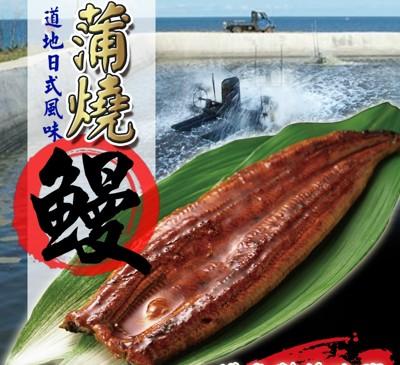 頂級日式蒲燒鰻魚片 (5.6折)