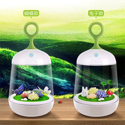 微景觀植物小夜燈 DIY植物燈 (2.5折)