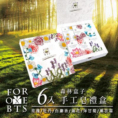 【森林盒子】NAHA蒳夏手工皂6入禮盒 (7.6折)