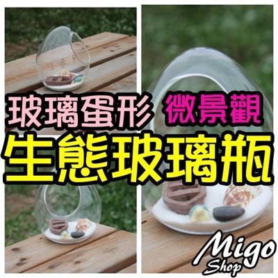 【玻璃蛋形微景觀生態玻璃瓶】多肉植物玻璃花瓶上斜口玻璃苔蘚DIY玻璃 (4.7折)