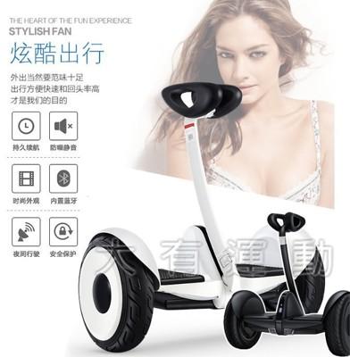 【大有運動】MINI平衡車 智能 平衡車 賽格威 第二代 小米九號 飄移車 電動 滑板車 兩輪平衡車 (6.5折)