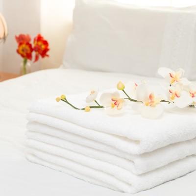【法式寢飾花季】純白五星飯店級厚織大浴巾(600g/條) (5折)