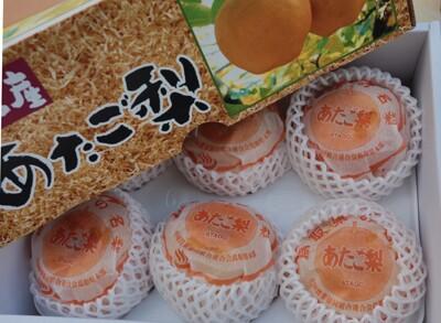 日本頂級鳥取梨 (8.7折)