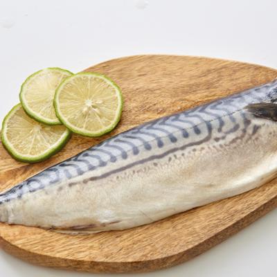 【凍凍鮮】挪威-超大XXXXL薄鹽鯖魚片 (260g±10%/尾) (3.3折)