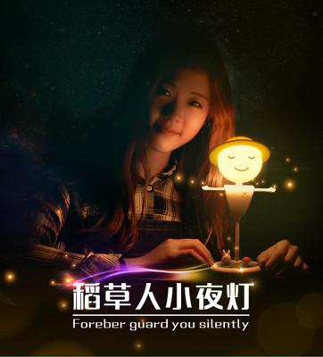 微景觀LED稻草人USB充電小夜燈 (4折)