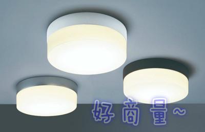 【好商量】舞光 吸頂燈 E27 雙燈 大蛋糕燈 OD-6047 OD-6049 OD-6051 陽台 (7.3折)