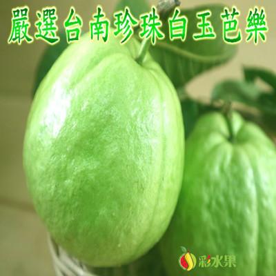 嚴選台南珍珠白玉芭樂禮盒 5斤(10-14顆) (5.8折)