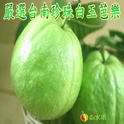 嚴選台南珍珠白玉芭樂禮盒 5斤(6-9大顆) (5.3折)