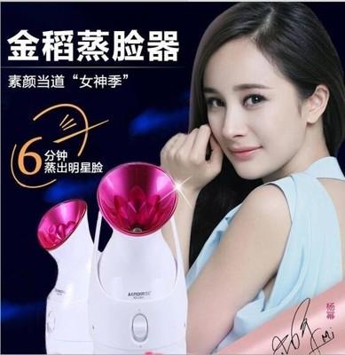 【保固一年 】金稻 蒸臉器 KD-2331A 熱噴 蒸臉機 家用 離子噴霧器 美容儀 BZJ (4折)
