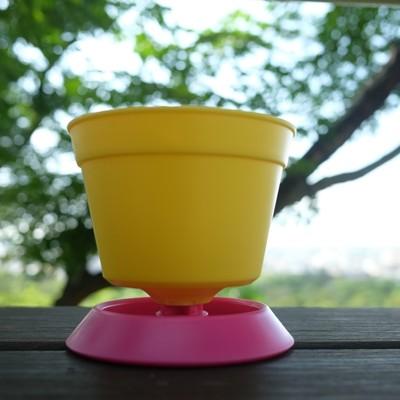 迷你小花盆,附水盤,色彩豐富,最適合桌上、室內、辦公桌舒壓、窗台、陽台 (4.3折)