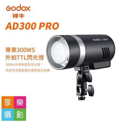 [享樂攝影]godox 神牛 ad300 pro 外拍燈 專業棚燈 300w TTL-標配 (9.9折)