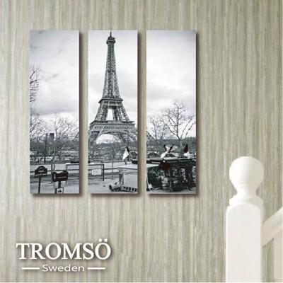TROMSO時尚無框畫-W124 巴黎風情(迷你款)/ 鐵塔 空間 裝飾畫 (8.4折)