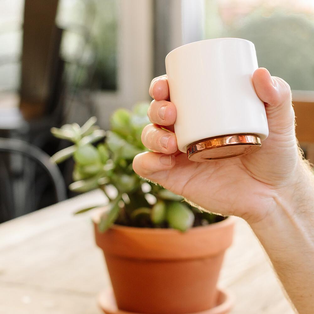 fellow monty 雙層陶瓷咖啡杯 4.5oz告耳杯-霧面白/啞光黑