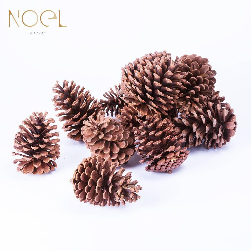 noel諾也市集天然乾燥大松果(12入)聖誕裝飾必備