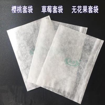 無花果套袋草莓柿子套袋藍莓防水防蟲病害育果袋冬棗果袋櫻桃套袋 - 7.5*10.5釐米500個 (3折)