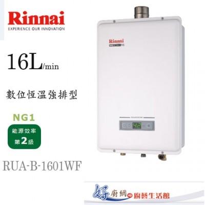 林內牌--RUA-A1601WF--16公升強制排氣熱水器 (7.5折)