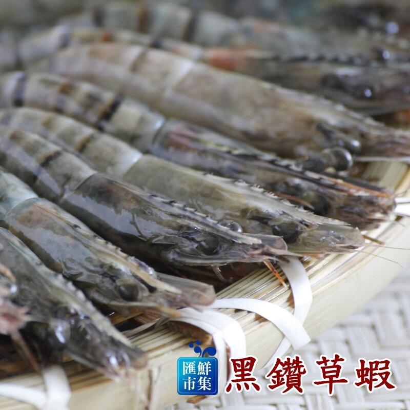 海鮮嚴選黑鑽草蝦10隻裝270g10%/盒