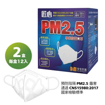 【匠心】PM2.5專業3D立體防霾口罩-12入/X2盒 (9折)