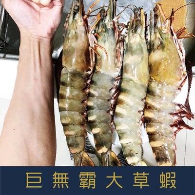 巨無霸大草蝦4p 1kg10% (7折)
