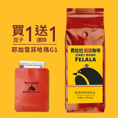【費拉拉 咖啡量販】耶加雪菲水洗 哈瑪合作社咖啡豆 一磅 (454g/磅) 限時下殺↘買一磅送一耳掛 (7.2折)