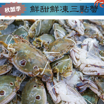 【i TYPE】特選鮮甜鮮凍三點蟹 秋蟹新品上市(母蟹) (2.9折)