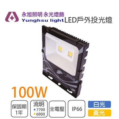 【永光】小燕子LED 100W 投光燈 探照燈 投射燈 全電壓 白光/黃光 戶外燈 有保固 IP66 (4.7折)