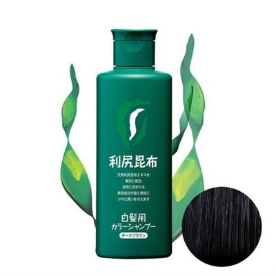 Sastty 利尻昆布白髮專用泡沫染髮露(黑/咖/褐) (6.8折)