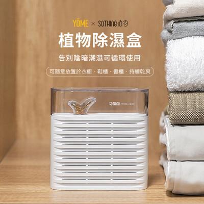 ⚡原廠台灣經銷商⚡ SOTHING 植物除濕盒 ⭐台灣在地保固 (8.2折)