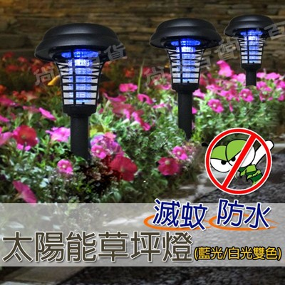 ~吾告熊 狂~太陽能殺蟲滅蚊燈藍光白光雙色戶外草坪燈電子驅蚊燈