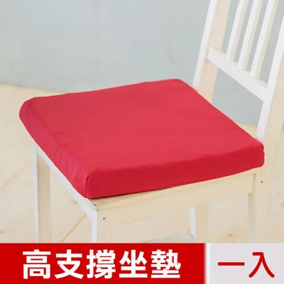 【凱蕾絲帝】台灣製造-久坐專用二合一高支撐記憶聚合紓壓坐墊-棗紅 (7.2折)