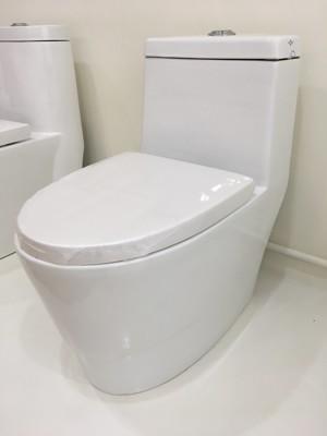 單體馬桶 高科技抗汙釉面 雙龍捲式沖水(同TOTO) 可直上免治馬桶蓋 (7.8折)