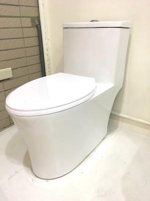 單體馬桶 二段式省水 同TOTO雙龍捲沖水 高科技抗汙釉面處理 (7.3折)