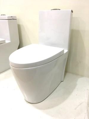 單體馬桶 美觀大方 雙龍捲漩渦沖水 抗汙釉面處理好清潔(同TOTO) 30/40cm 緩降馬桶蓋 (8.1折)