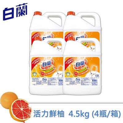 全新白蘭動力配方洗碗精(鮮柚)4.5kg/箱 (7.8折)