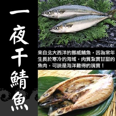 XXL挪威薄鹽鯖魚一夜干 (2.6折)