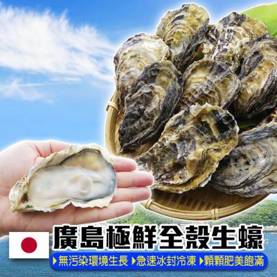 活凍廣島帶殼牡蠣 1kg (4.7折)