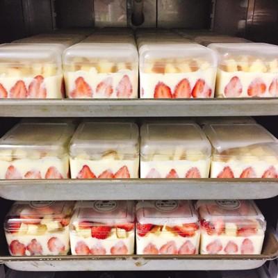 1入含蓋 500CC草莓寶盒透明盒 塑膠盒 草莓便當 提拉米蘇盒 點心盒 餅乾盒 保鮮盒 收納盒 (3.2折)