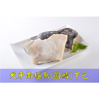 【富爾喜生鮮】犬牙南極魚(圓鱈)下巴/500g/包 (6.7折)