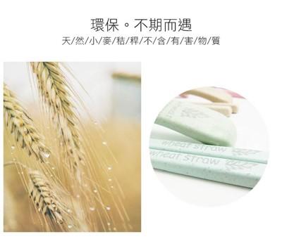 Wheat Straw 環保便攜小麥方型筷/湯匙 (0.3折)