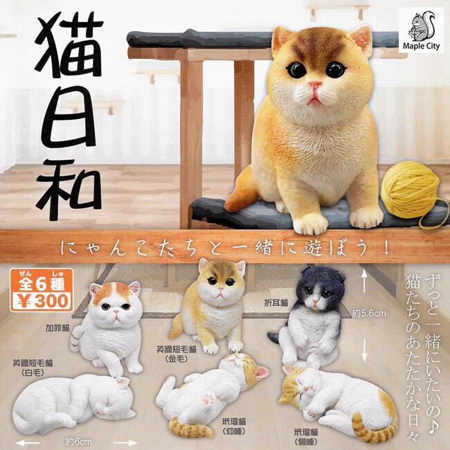 全套6款 仔貓圓滾滾造型公仔 扭蛋 轉蛋 模型 貓日和 圓滾滾小貓 喵星人 幼貓 709365