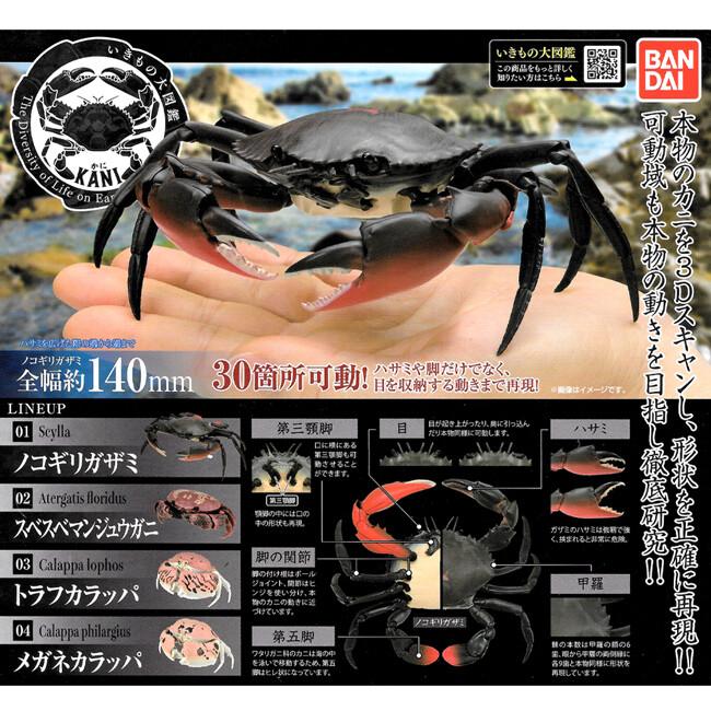 小全套3款 螃蟹 環保扭蛋 扭蛋 轉蛋 造型轉蛋 環保蛋殼 動物模型 579779a 579779b