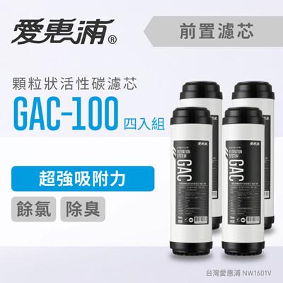 愛惠浦 10英吋前置GAC顆粒狀活性碳濾芯(4支1組) GAC-100 (8.3折)