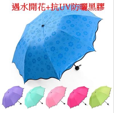 黑膠 遇水開花 遮陽傘 晴雨傘 三折傘 抗UV傘 (2.7折)