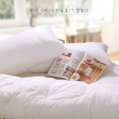 輕透暖 2.5kg 遠東棉 保暖透氣冬被 台灣製 ARTIS (5.7折)