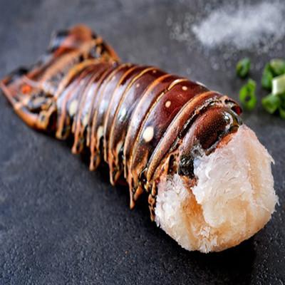加勒比海龍蝦身 (6.3折)