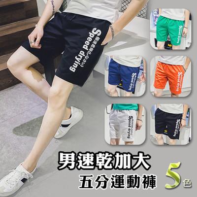 速乾透氣加大五分運動褲 (3.5折)