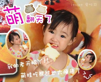 可愛造型~熊熊吐司 (0.3折)