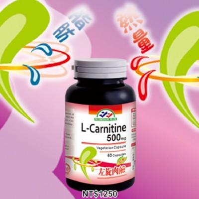 天然 L-卡尼丁 / 左旋肉鹼 膠囊 60粒裝 美國進口 營養補力 (5.8折)